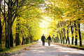 Couple walks down the park alley Stock Image