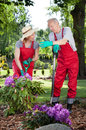 Couple working in garden vertical view of Royalty Free Stock Photos