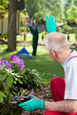 Couple working together in garden a vertical Stock Images