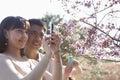 Couples de sourire prenant une photographie d une branche avec des fleurs de cerisier extérieur en parc pendant le printemps Photo libre de droits