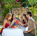 Couples enjoying a healthy outdoor lunch in the garden laughing and joking as they toast each other with their drinks Royalty Free Stock Photo