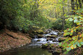 Courthouse creek near the falls in the pisgah national forest near devil s in north carolina Stock Photos