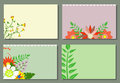 Cover template with flowers vector illustration of templates colorful and leaves Stock Images