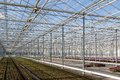 Covering of a big glass greenhouse in the netherlands Royalty Free Stock Photo
