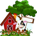 Cow with blank sign in garden illustration of Stock Photo