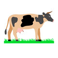 Cow on green field illustration Royalty Free Stock Photo