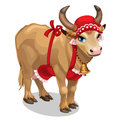 Cow housewife in red cap and apron. Vector