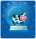 Cow inside of the snow-dome. Royalty Free Stock Image