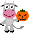 Cow jack illustration of a cartoon holding a o lantern Stock Image