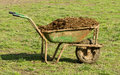 Cow manure in carts Royalty Free Stock Photo
