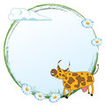 Cow on a meadow vector frame with funny and flowers of daisy Stock Images
