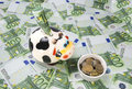 Cow a moneybox on a green field of euro