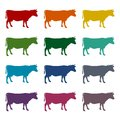 Cow silhouette icons set Royalty Free Stock Photo
