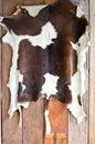 Cow skin. Royalty Free Stock Photo
