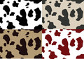 Cow skin pattern Royalty Free Stock Images