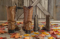 Cowboy boots and Fall leaves Royalty Free Stock Photo