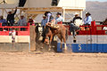 A cowboy participates in bucking horse competition sacaton arizona united states march mul chu tha rodeo contestants bronc busting Royalty Free Stock Images