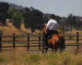 A cowboy riding his horse along a fence is bay in meadow Stock Photos