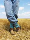 Cowboy standing in field. Royalty Free Stock Images