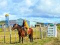 Cowboy at work on his horse punta arenas patagonia Stock Images