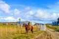Cowboy at work on his horse punta arenas patagonia Stock Photos