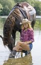 Cowgirl with horse beautiful blond woman holding brown in the water Royalty Free Stock Photos