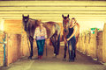 Cowgirl and jockey walking with horses in stable Royalty Free Stock Photo