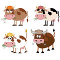 Cows and bull set cartoon Stock Photography