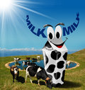 Cows grazing with milk beverage carton in the mountains white black spots and text in the shape of horns fresh concept Stock Photo