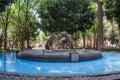 Coyoacan,Mexico fountain Royalty Free Stock Photo