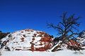 Coyote buttes red rock with snow with blue sky Stock Image