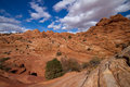 Coyote buttes the wave in bundesstaat arizona in usa Stock Image