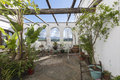 Cozy courtyard with plants sunny and fresh Royalty Free Stock Photo