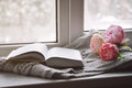 Cozy home still life: spring flowers and opened book with warm plaid on windowsill. Springtime concept, free copy space Royalty Free Stock Photo