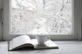Cozy winter still life Royalty Free Stock Photo