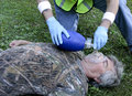 Cpr with an ambu bag paramedic giving to a men using Stock Image