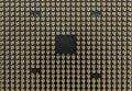 CPU Pin Grid Array - Medium Angled - Bottom of Computer Microprocessor Royalty Free Stock Photo