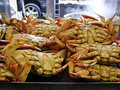 Crab for sale Royalty Free Stock Images