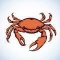 Crab. Vector drawing