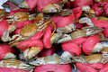 Crabs selling in market raw china shown fresh material of dishes and different cooking or local food culture Stock Image