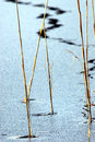 Crack across frozen lake Stock Photography