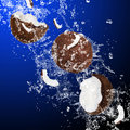 Cracked coconuts splashing water Stock Photography