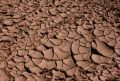 Cracked Dried Mud Stock Photo