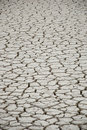 Cracked and dry earth in the desert Stock Image