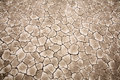 Cracked dry ground  texture Royalty Free Stock Photography