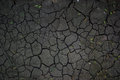 Cracked earth texture Royalty Free Stock Photo