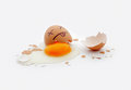 Cracked egg close up death concept Royalty Free Stock Photos