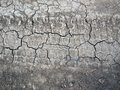 Cracked ground texture with the tracks of wheels Royalty Free Stock Photos