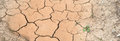 Cracked land caused by drought Stock Images