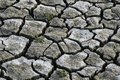 Cracked lands no water. arid soil photograph Royalty Free Stock Photo